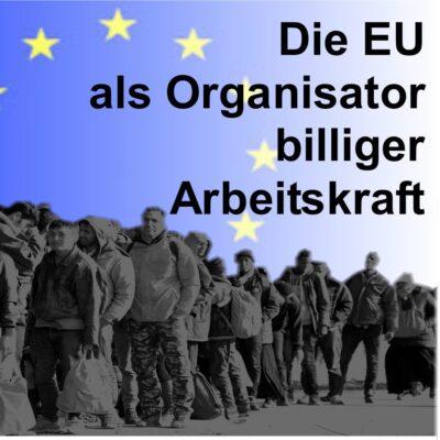 Die EU als Organisator billiger Arbeitskraft *15. Nov*